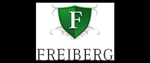 FREIBERG & PARTNER Unternehmenssicherheit